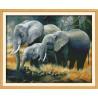 Rodzinka słoni