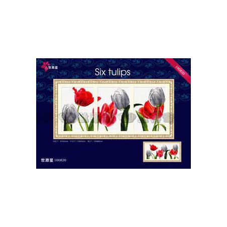 Sześć tulipanów