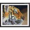 Tygrys profil