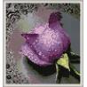 Zestaw do diamond painting - fioletowa róża