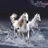 Zestaw do diamond painting - cudowne konie