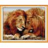 Bracia lwy