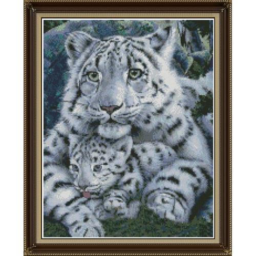 Tygrysica