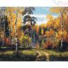 Malowanie po numerach - Brzozy jesienią