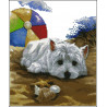Piesek biały