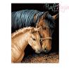 Malowanie po numerach -Dwa konie