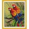 Papużki