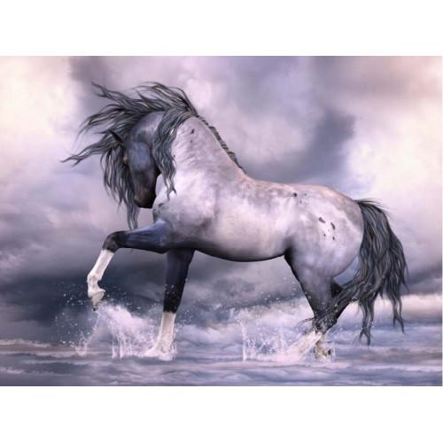 Cudowny koń