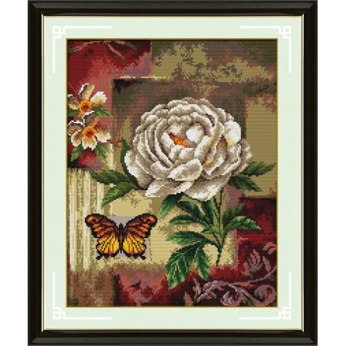 Róża biała