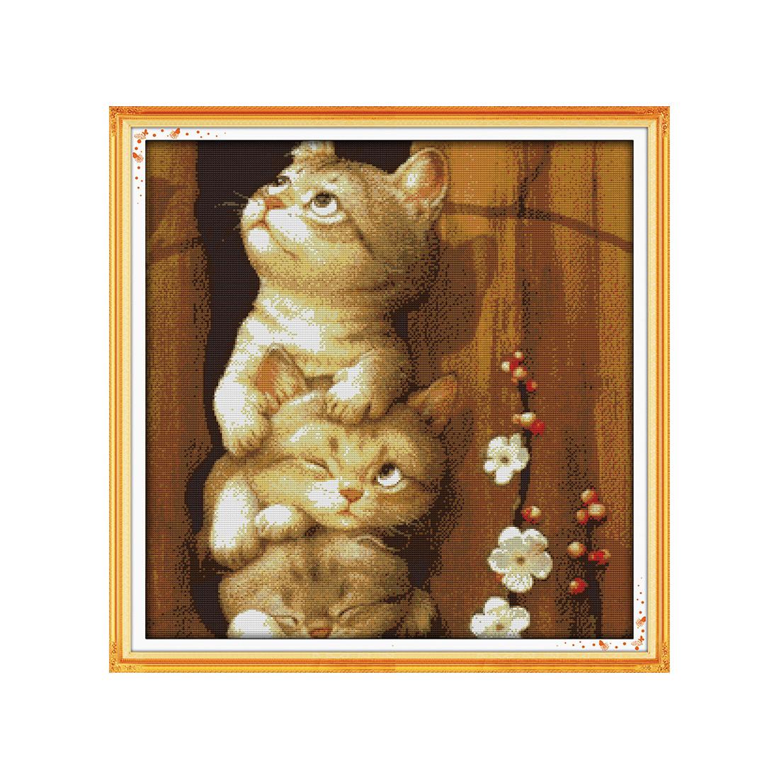 Ciekawskie koty