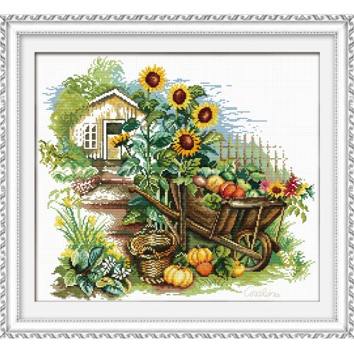Taczki i słoneczniki
